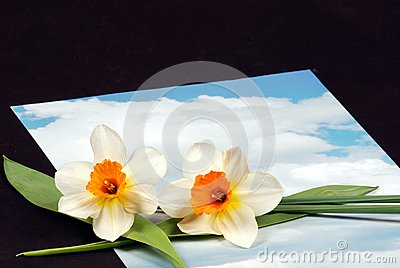 Sky letter with flowers