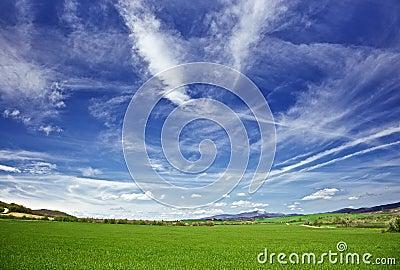 Sky and meadows