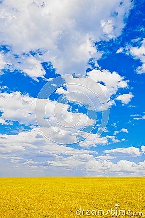 Sky over the plain
