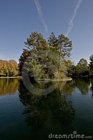 Sky, Tree, Water