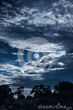 Free Sky With Clouds And Moon Above Silhouettes Of Trees. Serenity Na Stock Photo - 101922710