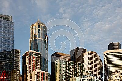 Skyscraper building towers compose a city skyline
