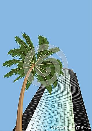 Skyscraper  and  palm  tree