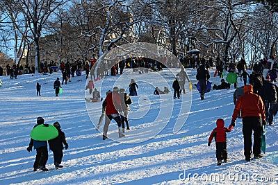Sledding in Central Park Editorial Photo