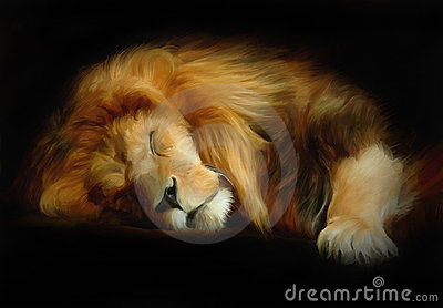 Sleep lion