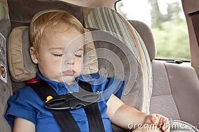 Sleeping Cargo