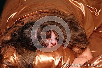 Sleeping plump women on silk