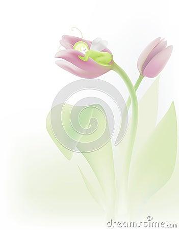 Sleeping in tulip