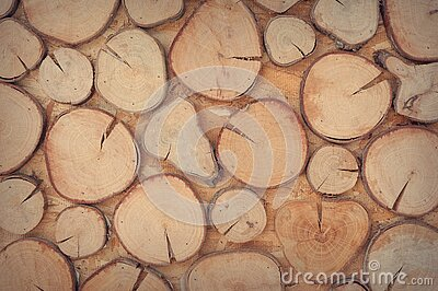 Slice Of Brown Wooden Log Free Public Domain Cc0 Image