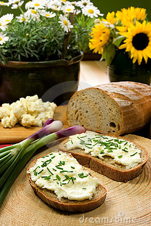 Free Slice Of Bread Spread With Sheep Cheese Royalty Free Stock Photography - 5401007