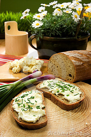 Free Slice Of Bread Spread With Sheep Cheese Royalty Free Stock Photo - 5401015