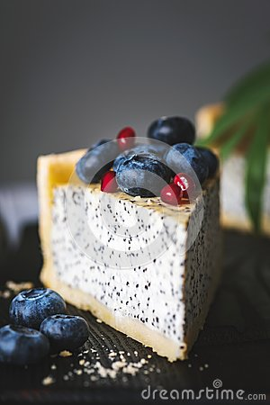 Free Slice Of Cake With Poppy And Blueberries Royalty Free Stock Images - 108670459