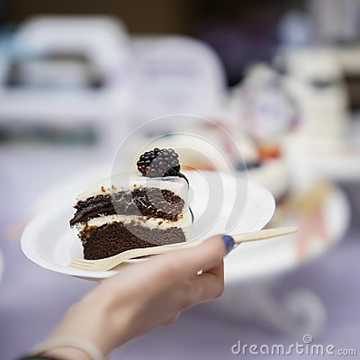 Free Slice Of Delicious Chocolate Cake With Cream And Blackberries, Plate In Hand, Fresh Summer Dessert, Selective Focus Stock Image - 111046841
