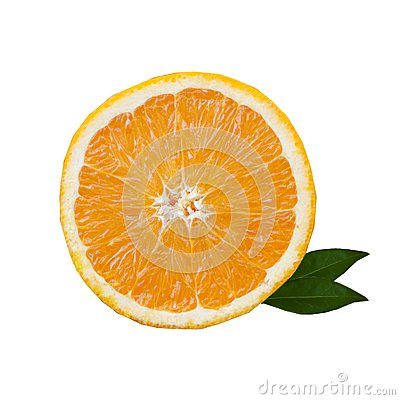 Slice of orange with green leaves