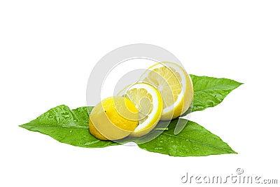 Sliced fresh lemon on green leaves