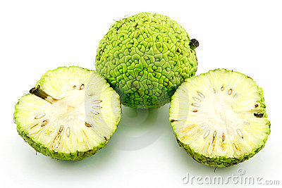 Sliced Osage Oranges (Maclura) Isolated On White Stock Photography - Image: 10538912