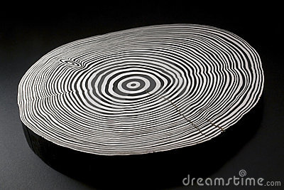 Sliced wood with black and white annual rings