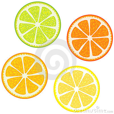 Free Slices Of Citrus Fruits Royalty Free Stock Photo - 6403495