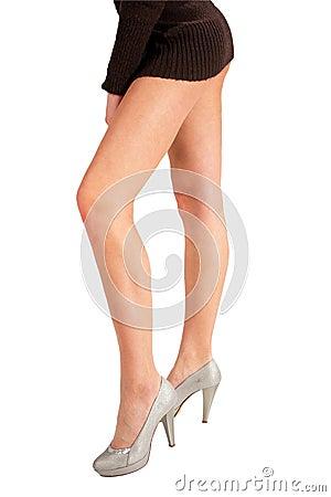 The slim erotic legs