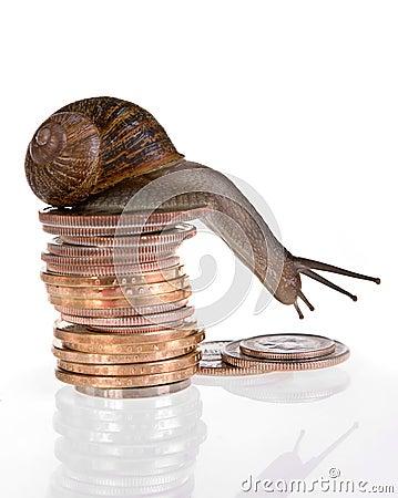 Slow finances