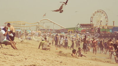 Slow motion of seagulls and beach goers stock footage