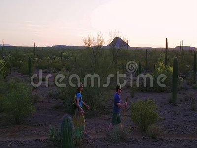 Slow Motion Shot of Desert Hikers at Sunset. Slow Motion Shot of Southwest Desert Hikers at Sunset stock video