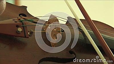 Sluit omhoog op viool stock videobeelden