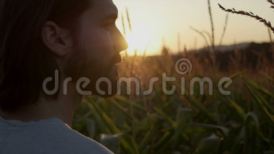 Sluit omhoog van de knappe mens met baard met aardlandschap in zonsondergang/zonsopgang stock footage