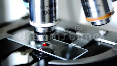 Sluit omhoog van een microscoop stock video