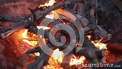Sluiten van hete haard vol droog brandhout stock footage