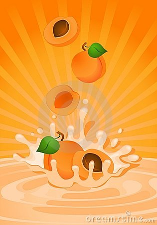 Smaklig yoghurt för aprikos