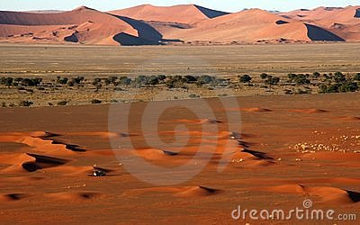 Small 4x4 in big namib desert