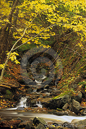 Free Small Autumn Waterfall Stock Images - 782334