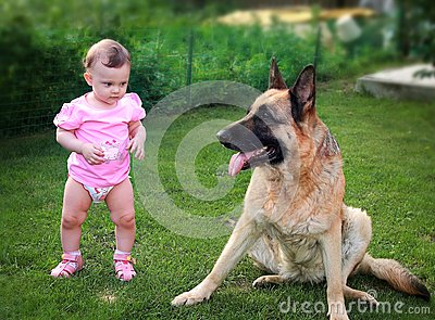 Small baby serious looking on dog