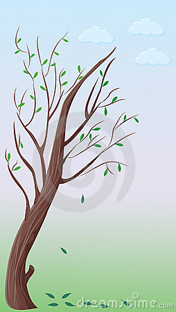 Small bent tree