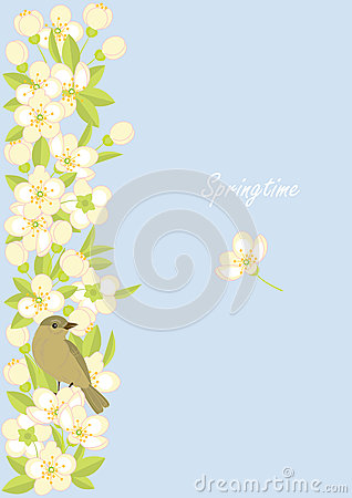 Small birds and spring blossoming branches Vector Illustration