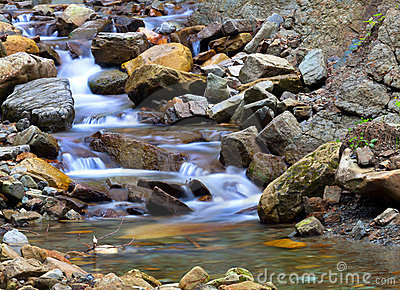 Small blue brook