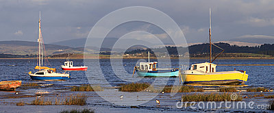 Small boats and birds on shoreline, Morecambe Bay