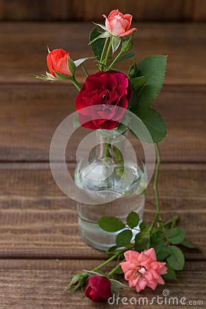Small bouquet of roses on a wooden background stock photo for Different color roses bouquet