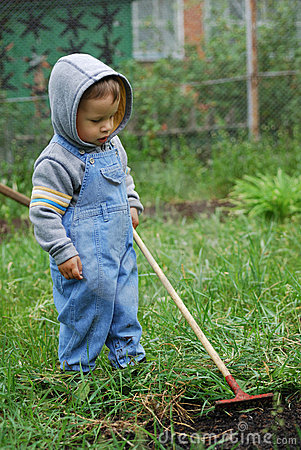Small boy with rake