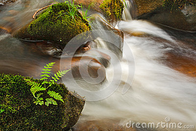 Small cascade on the river Wharfe
