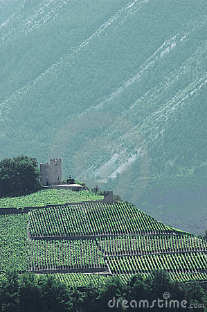 Small Castle in mountains surrounded by vineyards