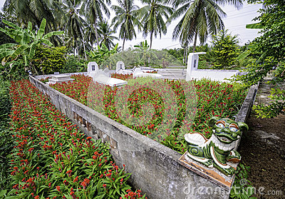 Small cemetery in the mekong delta,vietnam 2