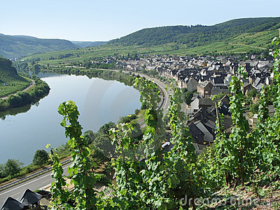 Small city at river Moselle