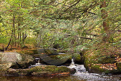 Small creek in Muskoka, Ontario
