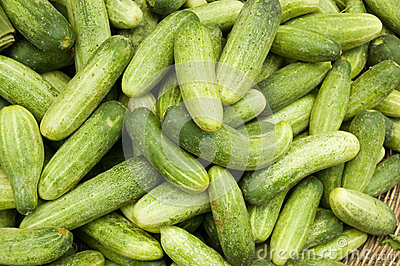 Small cucumbers at a Cambodian Market
