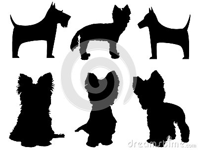 Small Dog Silhouettes Yorkshire Terrier And Schna Stock