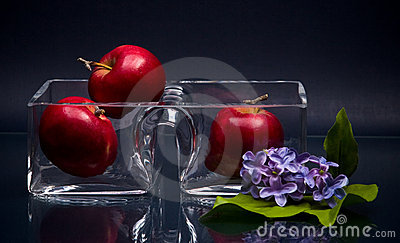 Small double glass vase and three apples on gray