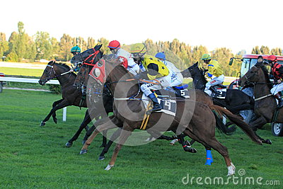 Small draw horse racing in Prague Editorial Image