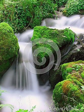 Free Small Falls Royalty Free Stock Photos - 5580568